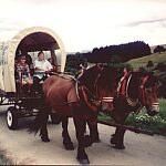 Covered wagon tour
